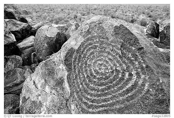 Hohokam petroglyphs on Signal Hill. Saguaro National Park (black and white)
