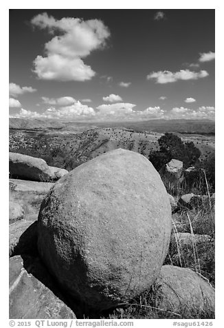Round boulder, Rincon Mountains foothills. Saguaro National Park (black and white)