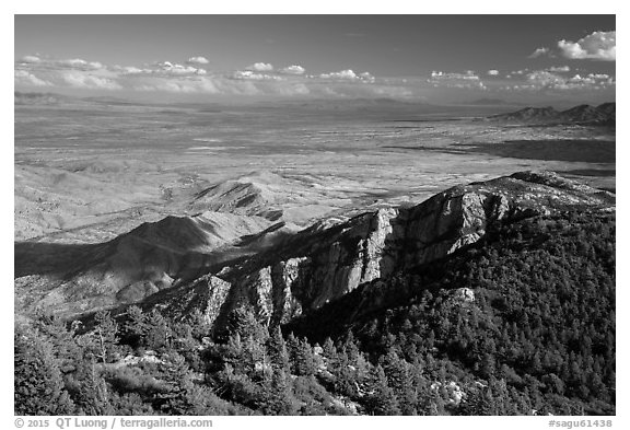 Wrong Mountain from Rincon Peak. Saguaro National Park (black and white)