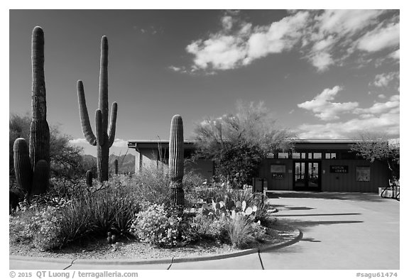 Rincon Visitor Center. Saguaro National Park (black and white)