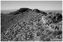 Hikers on trail below Wasson Peak. Saguaro National Park ( black and white)