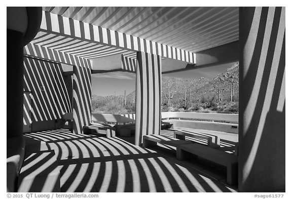 Red Hills Visitor Center patio and shadows. Saguaro National Park (black and white)