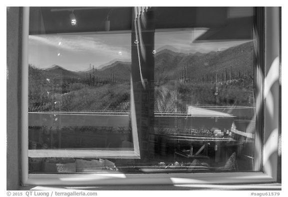Tucson Mountains and cactus, Red Hills Visitor Center window reflexion. Saguaro National Park (black and white)