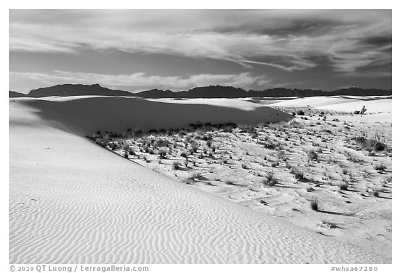 Backcountry camping area. White Sands National Park (black and white)