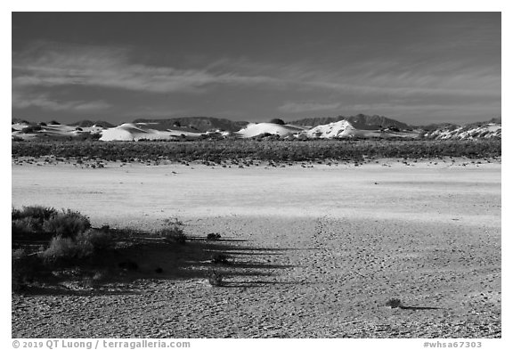 Playa and sand dunes. White Sands National Park (black and white)