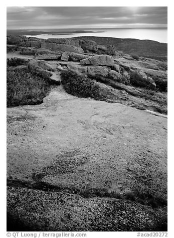 View over Atlantic from top of Mt Cadillac with granite slab covered with lichen. Acadia National Park (black and white)