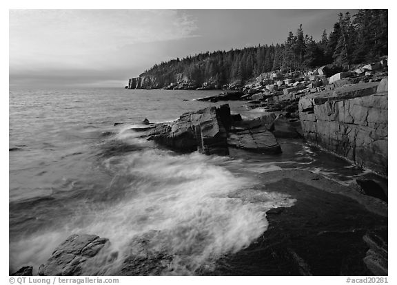 Surf and granite  coast near Otter Cliffs, morning. Acadia National Park (black and white)