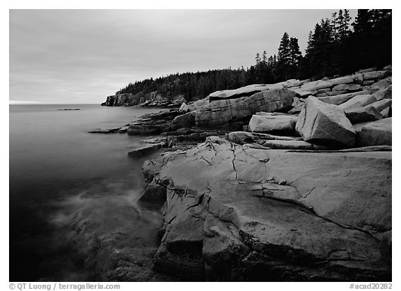 Pink granite slabs on the coast near Otter Point, sunrise. Acadia National Park (black and white)