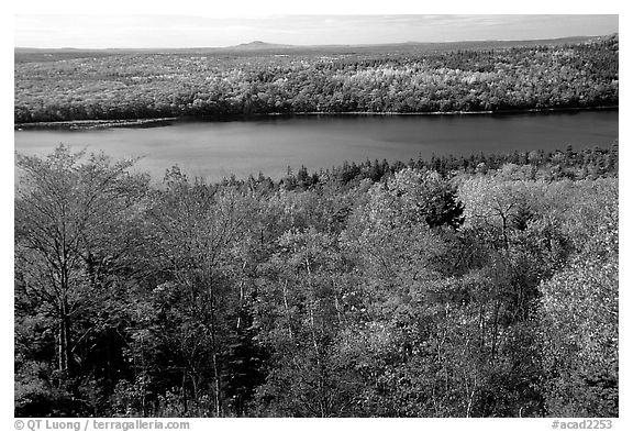 Eagle Lake and autumn colors. Acadia National Park (black and white)