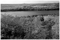 Eagle Lake and autumn colors. Acadia National Park ( black and white)
