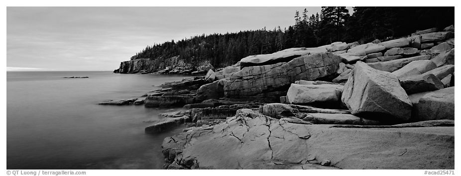 Rocky coastline with granite slabs. Acadia National Park (black and white)