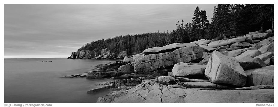 Rocky ocean coast at sunrise, Otter Point. Acadia National Park (black and white)