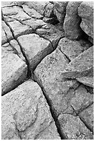 Pink granite slab with cracks. Acadia National Park, Maine, USA. (black and white)