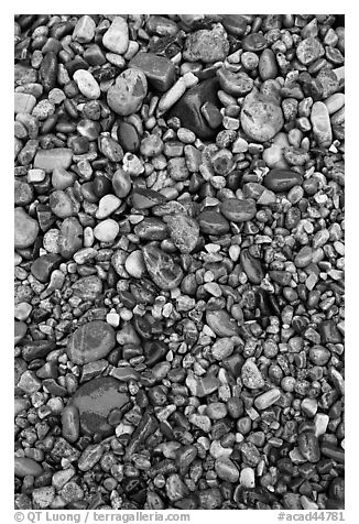 Pebbles of various sizes and colors. Acadia National Park (black and white)