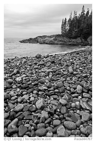 Pebbles and cove, Hunters beach. Acadia National Park (black and white)