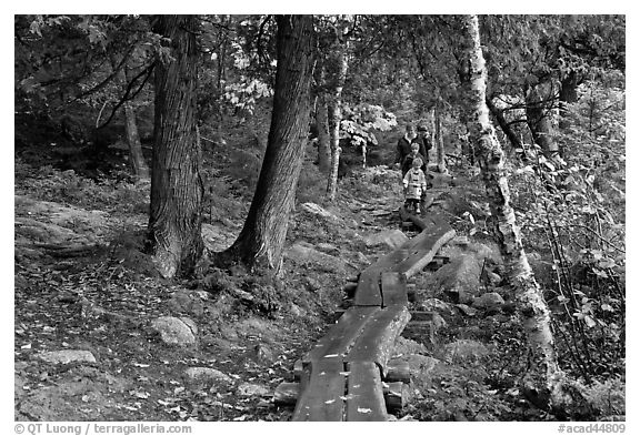 Family hiking on boardwalk. Acadia National Park (black and white)