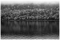 Trees in fall colors reflected in Jordan Pond. Acadia National Park, Maine, USA. (black and white)