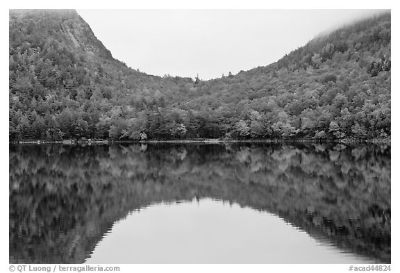 Hill curve and trees in fall foliage reflected in Jordan Pond. Acadia National Park (black and white)
