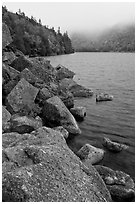 Rocky shore in autumn, Jordan Pond. Acadia National Park ( black and white)