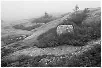 Summit of Cadillac Mountain during heavy fog. Acadia National Park, Maine, USA. (black and white)