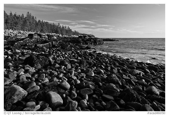 Coastline with boulders, late afternoon, Schoodic Peninsula. Acadia National Park (black and white)