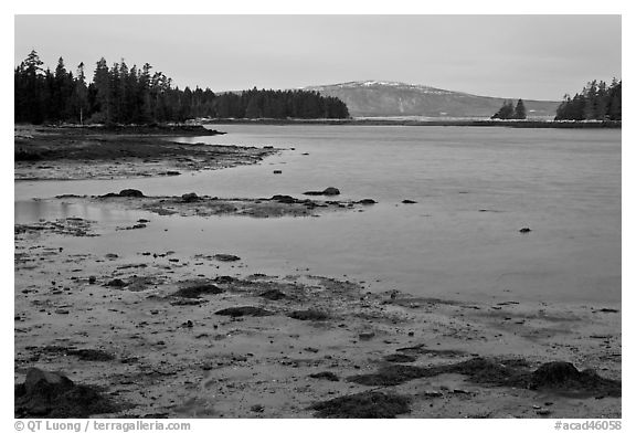 West Pond and snowy Cadillac Mountain, dawn, Schoodic Peninsula. Acadia National Park (black and white)