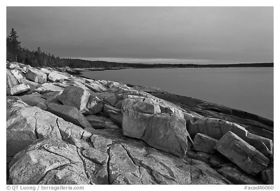 Granite slabs on coast, sunrise, Schoodic Peninsula. Acadia National Park (black and white)