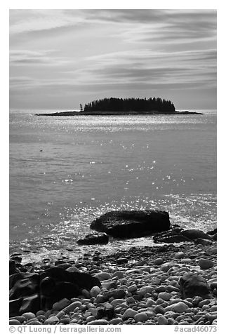 Rolling Island, Schoodic Peninsula. Acadia National Park (black and white)