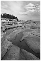 Slabs and puddles near Schoodic Point. Acadia National Park, Maine, USA. (black and white)