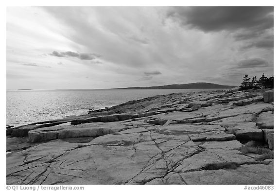 Rock slabs, Schoodic Point. Acadia National Park (black and white)
