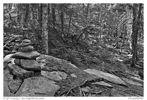Cairn on trail, Isle Au Haut. Acadia National Park (black and white)