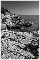 Rocky ocean shoreline, Isle Au Haut. Acadia National Park, Maine, USA. (black and white)