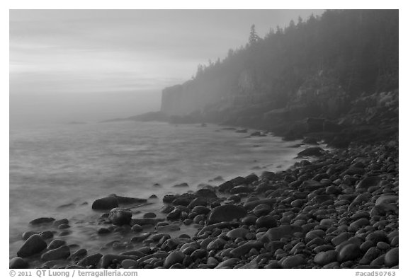 Otter cliff and cobblestones on misty morning. Acadia National Park (black and white)