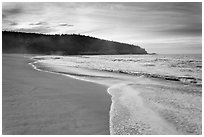Deserted Sand Beach at dawn. Acadia National Park ( black and white)