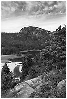 Tidal creek and Behive. Acadia National Park, Maine, USA. (black and white)