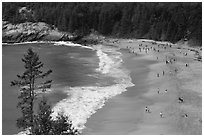 Sand Beach from above. Acadia National Park ( black and white)