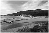 Tidal creek and Sand Beach. Acadia National Park ( black and white)