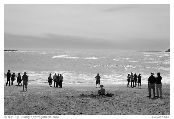 People looking at ocean from Sand Beach. Acadia National Park (black and white)