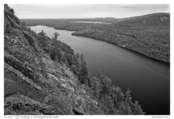 Echo Lake seen from Beech Cliff. Acadia National Park (black and white)