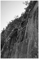 Hikers on vertical section of Precipice Trail. Acadia National Park ( black and white)