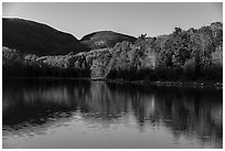 Trees in autumn foliage reflected in pond, Otter Creek. Acadia National Park ( black and white)