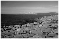 Visitor looking, Schoodic Point. Acadia National Park ( black and white)