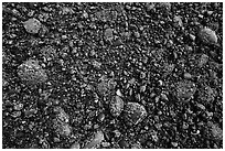 Close up of sea floor exposed at low tide. Acadia National Park ( black and white)