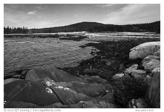 Schoodic Head from Little Moose Island. Acadia National Park (black and white)