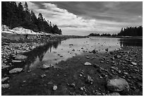 East Pond, low tide. Acadia National Park ( black and white)
