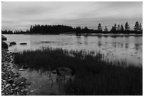 East Pond and  Little Moose Island at high tide. Acadia National Park ( black and white)