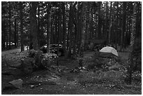 Blackwoods Campground. Acadia National Park ( black and white)