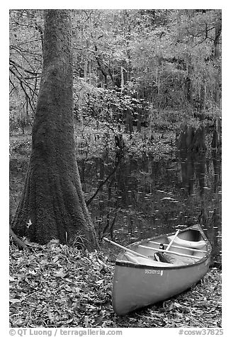 Red canoe on banks of Cedar Creek. Congaree National Park (black and white)