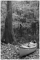Red canoe on banks of Cedar Creek. Congaree National Park, South Carolina, USA. (black and white)