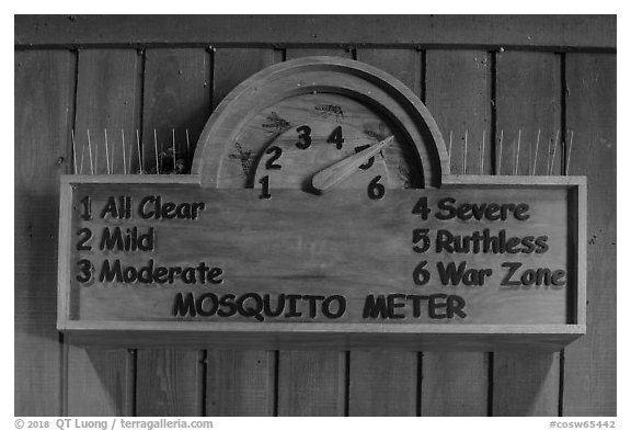 New mosquito meter. Congaree National Park (black and white)